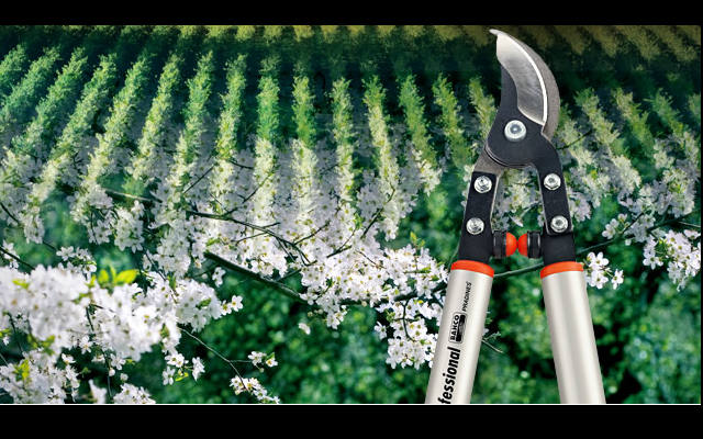Herramientas de jardinería y paisajismo ¿Cuáles son, cómo se clasifican y cómo armar un set básico?