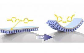 ¿Es posible la creación de un material adhesivo controlado a distancia por luz?