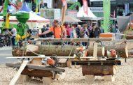 ¿Qué pasará en LIGNA 2017 Alemania, evento clave de la industria maderera?