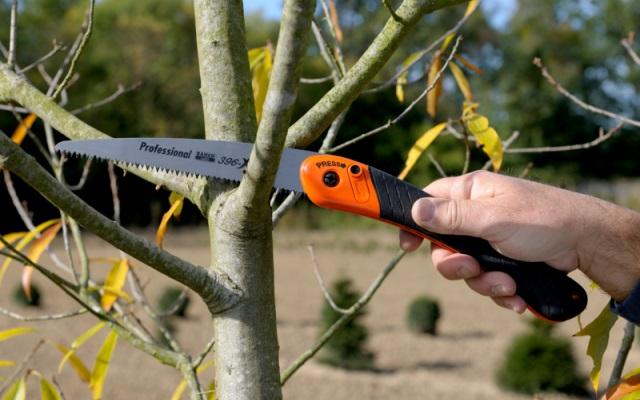 Serrucho de poda plegable para madera dura o seca
