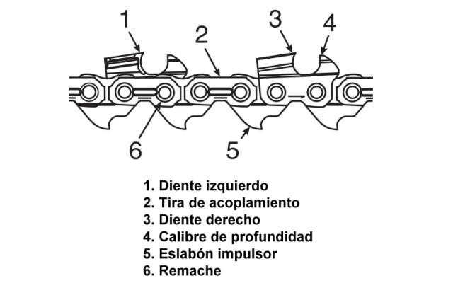 Motosierra - Cadena de aserrado